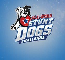 All-Star Stunt Dogs