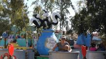 Pepe Le Pew's Rafts of Romance