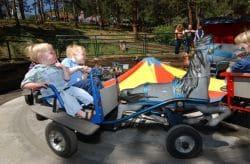 Pony Carts