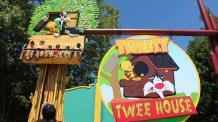 Tweety's Tree House
